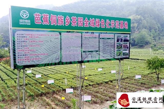 新茶价格涨三成 恩施玉露近32万亩春茶陆续开采